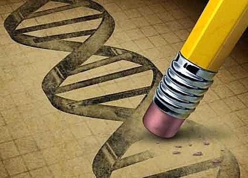 epigenética
